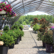 hope-timber-garden-center-nursery