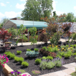 hope-timber-garden-center-trees-scrubs_and-perennials